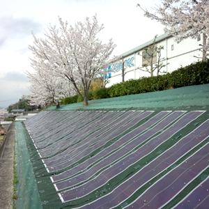 製品写真:太陽光発電システム(フレキシブル太陽電池)